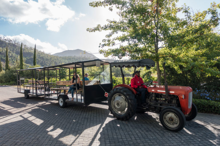 Another tractor ride at Grande Provence